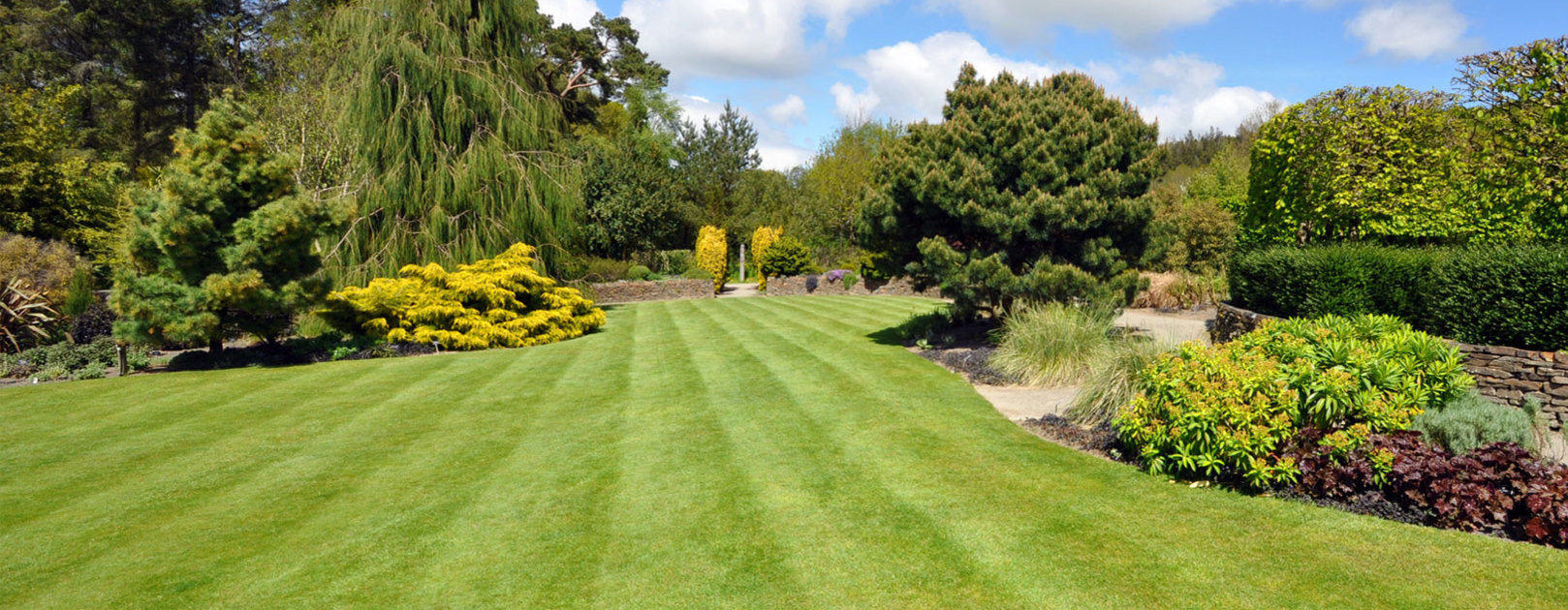 Lawn & Soil Care - Organic Fertilisers - Banner Image