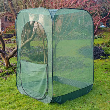 Fruit Cages - Pop Up Fruit Cages – Pop-Up Net Fruit Cage – 1.25m x 1.25m x 1.85m High