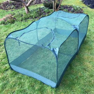 Fruit Cages - Pop Up Fruit Cages – GIANT Pop-Up Net Fruit Cage – 2.5m x 1.25m x 0.75m High