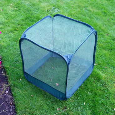 Fruit Cages - Pop Up Fruit Cages – Pop-Up Mini Net Fruit Cage – 50 x 50 x 50cm (pack of 2)
