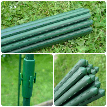 Plant Supports – Plant Stakes & Garden Canes - Garden Plant Stakes - 0.75m (pack of 10)