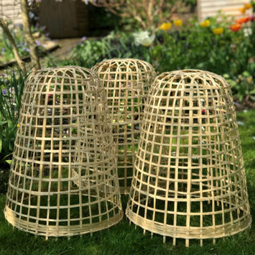 Cloches & Tunnels – Bamboo Bell Cloches – Bamboo Bell Cloche – small (pack of 3)