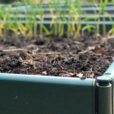 GYO Expert - Raised Beds