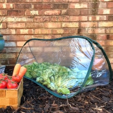 Cloches & Tunnels – Pop Up Triangle Cloches – Poly Cloches - Pop-Up Poly Cloche – small (1m long x 0.4m wide x 0.4m high)