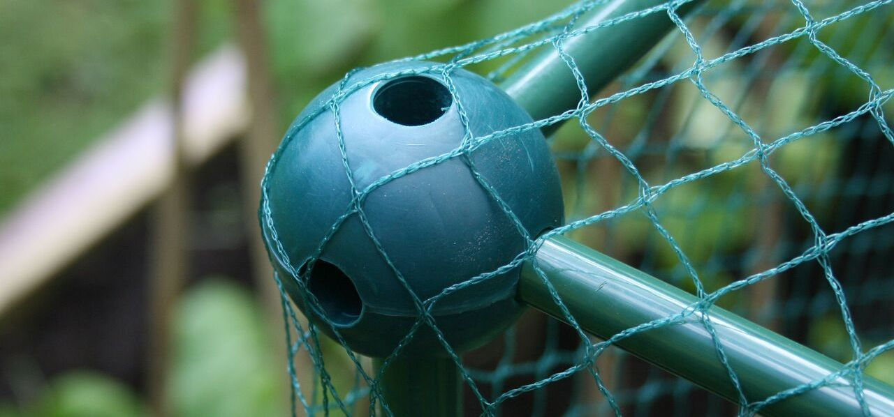 GYO Expert - Fruit Cages Guide - Build-a-Ball