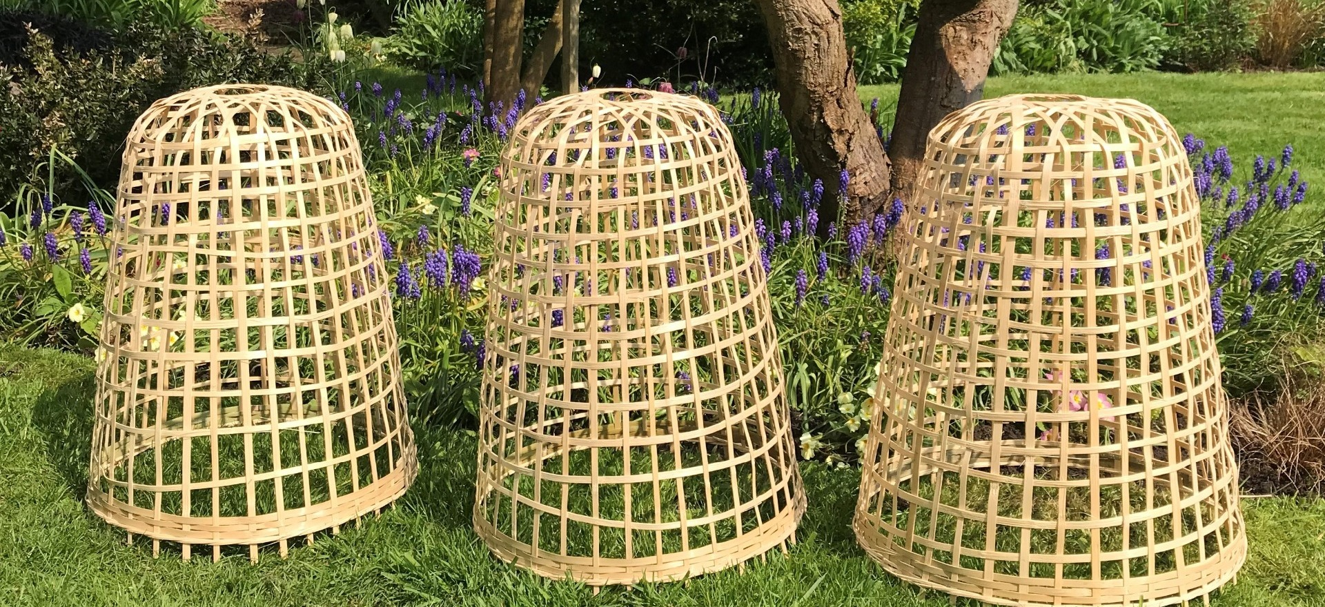 Cloches & Tunnels - Bamboo Cloches - Banner Image