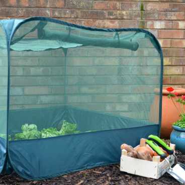 Fruit Cages - Pop Up Fruit Cages - Pop-Up Net Fruit Cage – 1.25m x 1.25m x 0.75m High