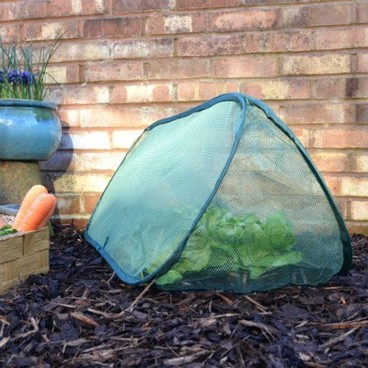 Cloches & Tunnels – Pop-Up Net Cloche – Small