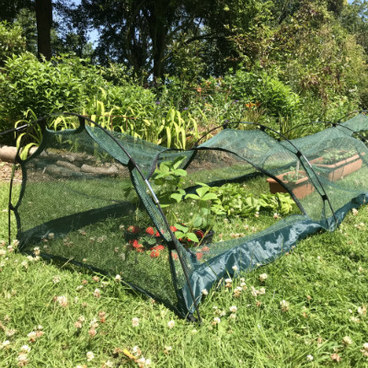 Cloches & Tunnels – Grow Tunnels – Pro-Gro Net Tunnel Cloche – 5m long x 0.75m wide x 0.5m high