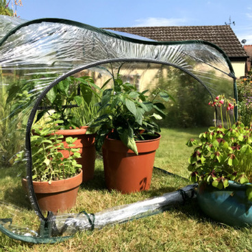 Pop Up Fruit Cages – Poly Cages - Pop-Up Poly Cage – 1m x 1m x 0.75m high