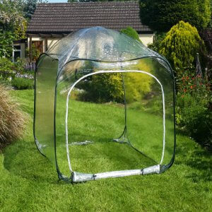 Fruit Cages - Pop Up Cages – Poly Cages - Pop-Up Poly Cage – 1.25m x 1.25m x 1.35m high