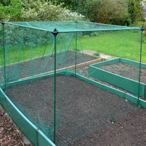 Fruit Cages - Budget Cages - Frame Only Cages - No-Frills Fruit & Veg Cage Frame Only – 1.6m high (Various Sizes)