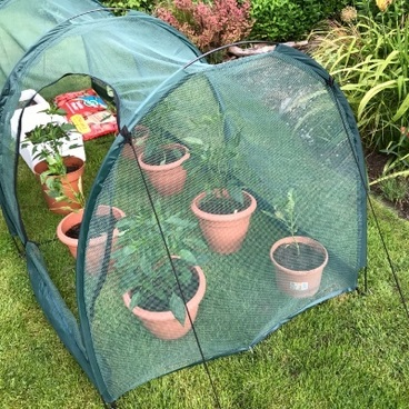 Cloches & Tunnels – Pro-Gro Net Tunnel Cloche – 2m long x 1m wide x 1m high