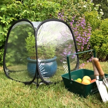 Fruit Cages - Pop Up Cages - MiniPol Pop Up Mini Greenhouse - 50 x 50 x 50cm