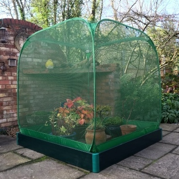 Christmas Gifts - Allotmenteer Raised Bed & Fruit Cage Combi Kit - Medium