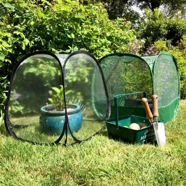 Fruit Cages & Grow Houses - Pop Up Fruit Cages - Poly Cages - Pop Up Mini Greenhouse & Fruit Cage Set - 50 x 50 x 50cm