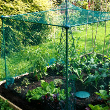 Summer Products - Build-a-Cage Fruit Cage with Bird Net (1.25m high)