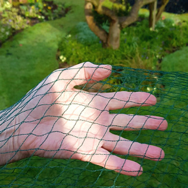 Netting & Fleece – Bird Netting - Bird Netting – 8m Wide (Various Sizes)