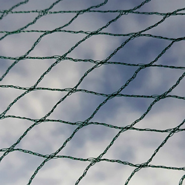 Fruit Cages - Walk In Fruit Cages – Walk In Fruit Cage Components - Bird Netting - 6m Wide (Various Sizes)