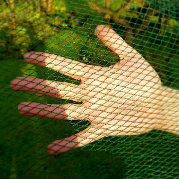 Fruit Cages - Walk In Fruit Cages – Walk In Fruit Cage Components - Butterfly Netting - 8m Wide (Various Sizes)