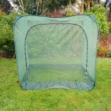 Fruit Cages - Pop Up Fruit Cages – Pop-Up Net Fruit Cage – 1.25m x 1.25m x 1.35m High