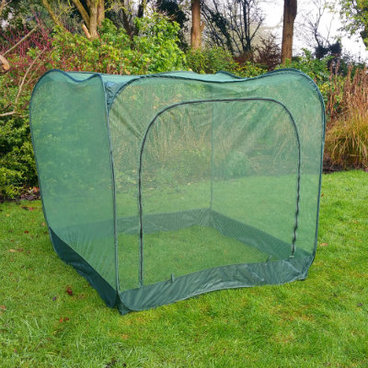Fruit Cages - Pop Up Fruit Cages – Pop-Up Net Fruit Cage – 1m x 1m x 1.35m High